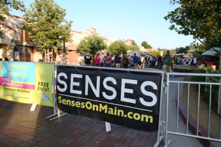 Senses Sign