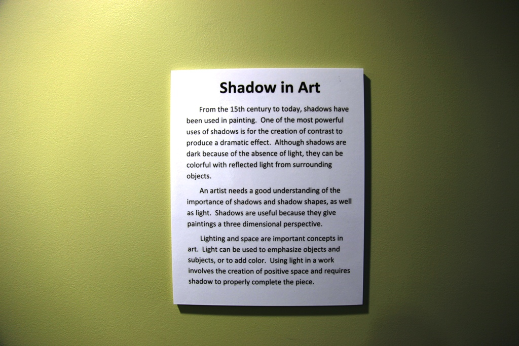 First Floor Art Gallery Shadow in Art 1