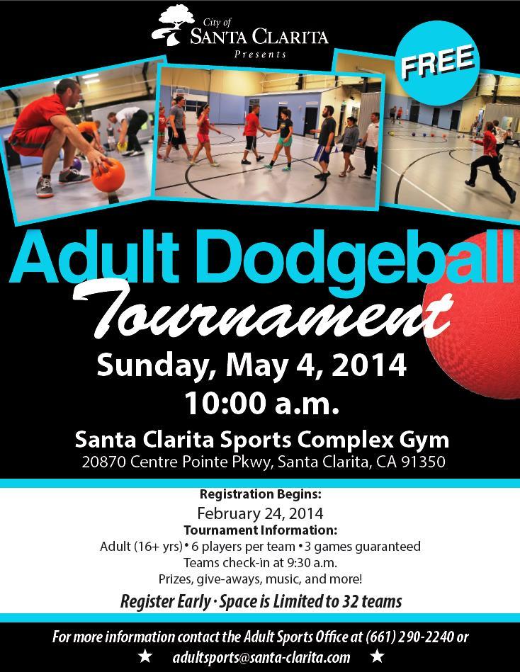 Adult Dodgeball 2014 Flyer