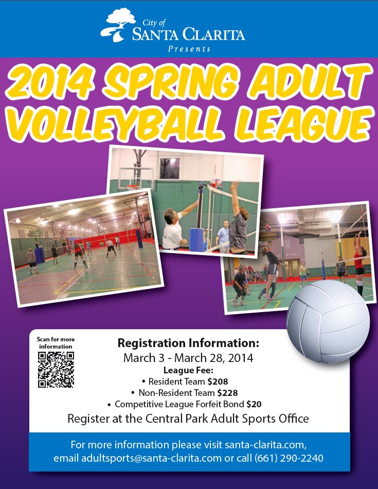 2014 Spring Adult Volleyball League Flyer
