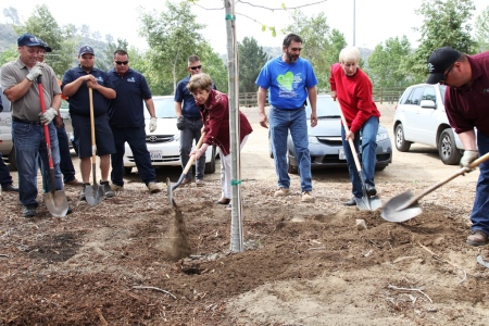 Earth Arbor Day 20141