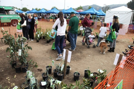 Earth Arbor Day 20144