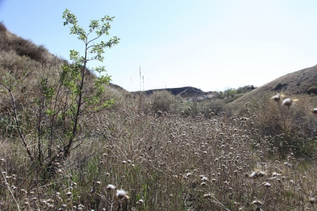 Haskell Canyon Open Space Pics