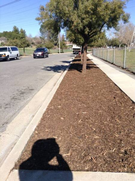 LDS-Parkway-Cleanup-after