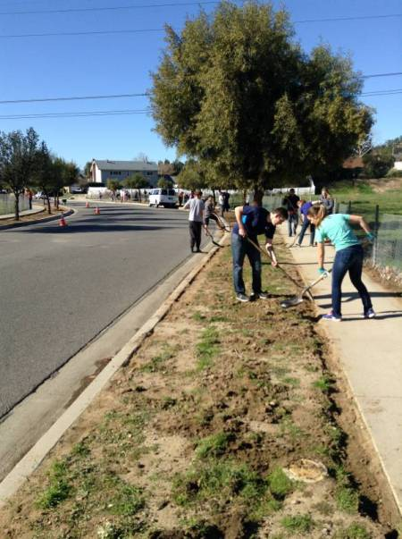 LDS-Parkway-Cleanup-before