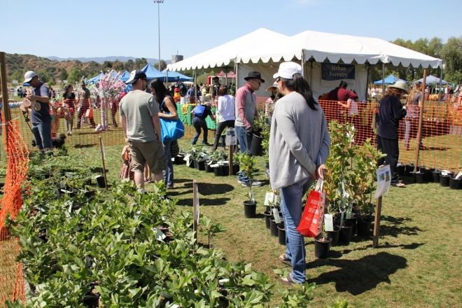 2015 Earth Arbor Day Festival3