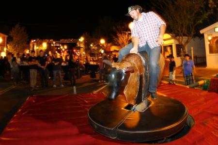 Senses Wild Wild West Dave Bull Rider
