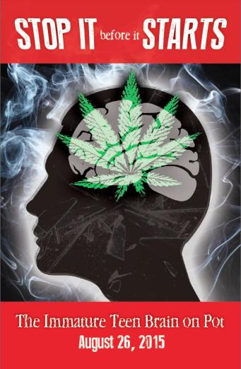 Teen Brain on Pot PostCard Front 2015